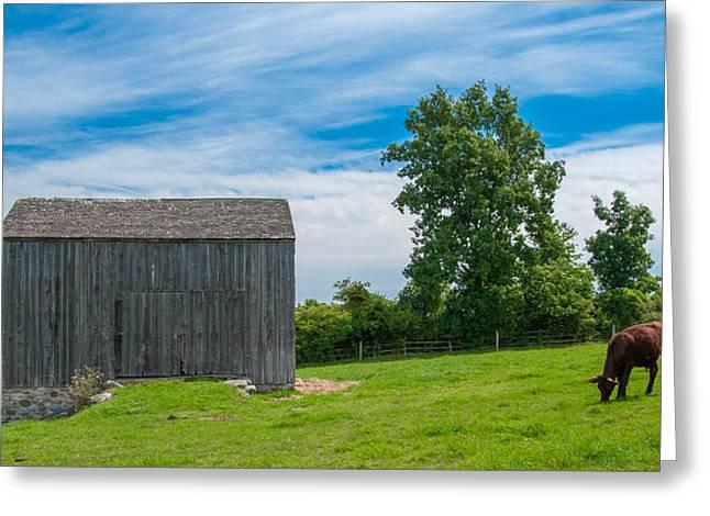 Jones Farm 17811c Greeting Card by Guy Whiteley