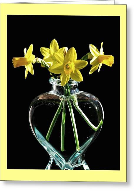 Jonquil Spring Greeting Card