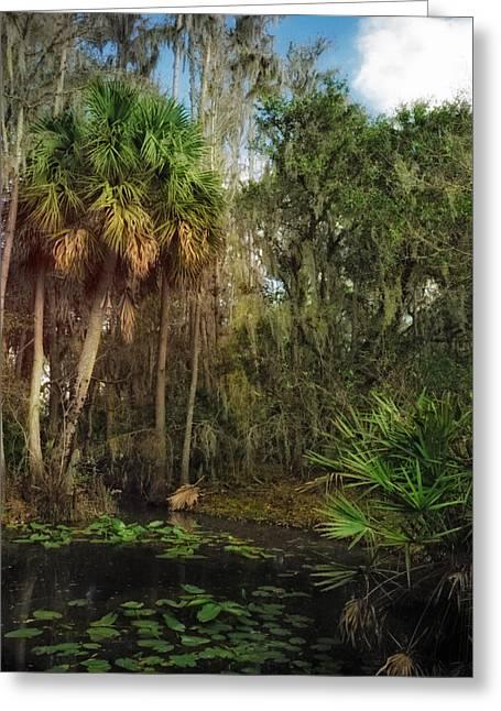Joshua Creek Seminole County Florida Greeting Card