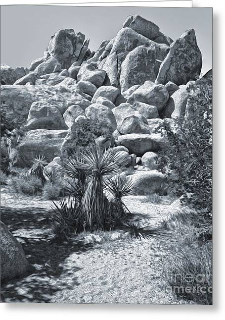 Joshua Tree - 09 Greeting Card by Gregory Dyer