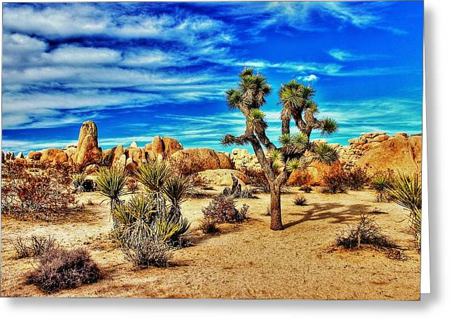 Greeting Card featuring the photograph Joshua Tree by Benjamin Yeager