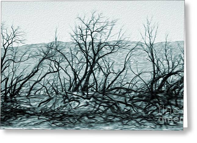 Joshua Tree - Burned Out Trees Greeting Card by Gregory Dyer