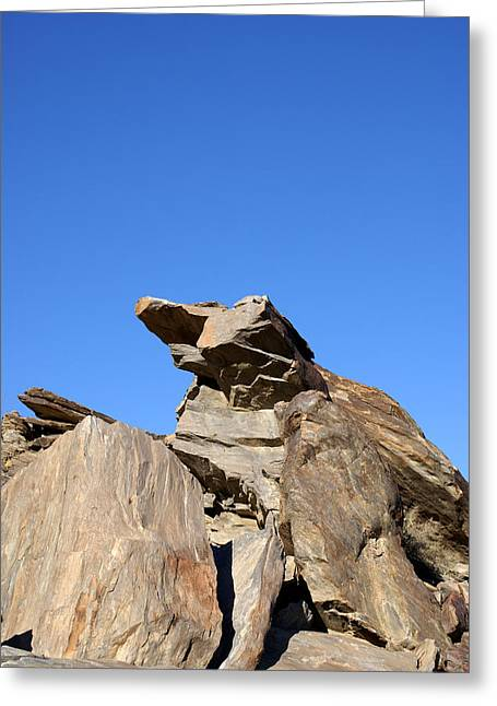 Joshua Tree Monster Rock Greeting Card by Barbara Snyder