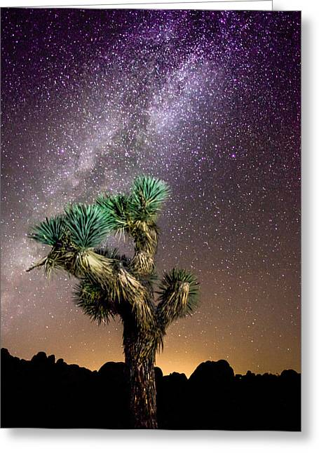 Joshua Tree Vs The Milky Way Greeting Card