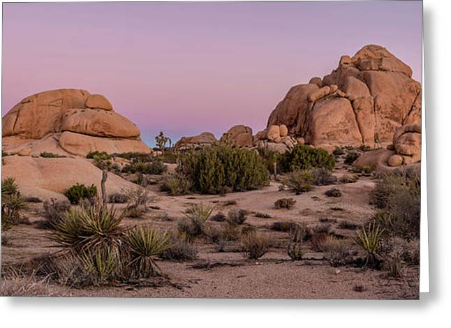 Joshua Trees And Rocks On A Landscape Greeting Card