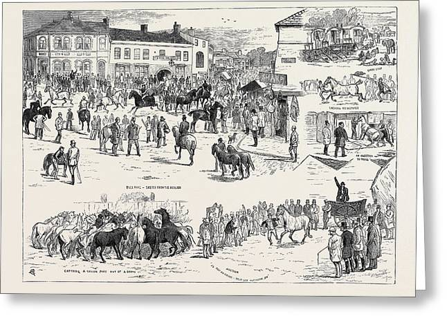 Jottings At The Horncastle Horse Fair, August 22 Greeting Card by English School