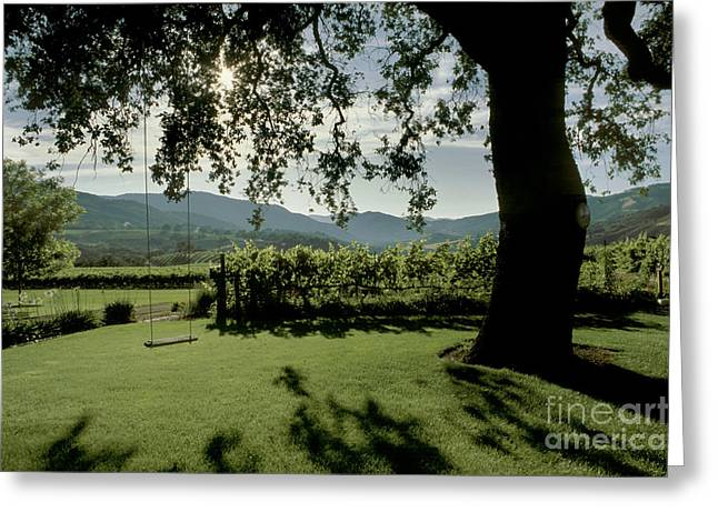 Joulian Vineyard Swing Greeting Card by Craig Lovell