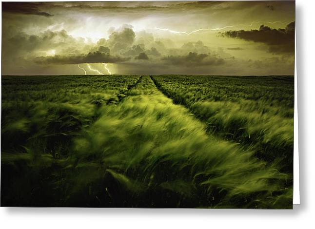 Journey To The Fierce Storm Greeting Card