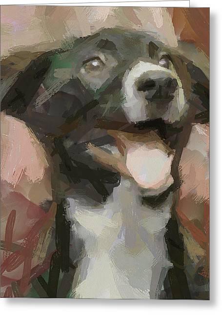 Joyee Doggy Greeting Card