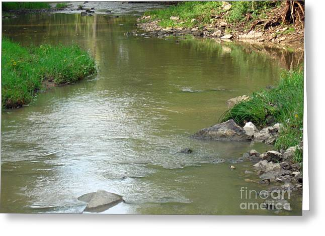 Jubilee Creek Greeting Card
