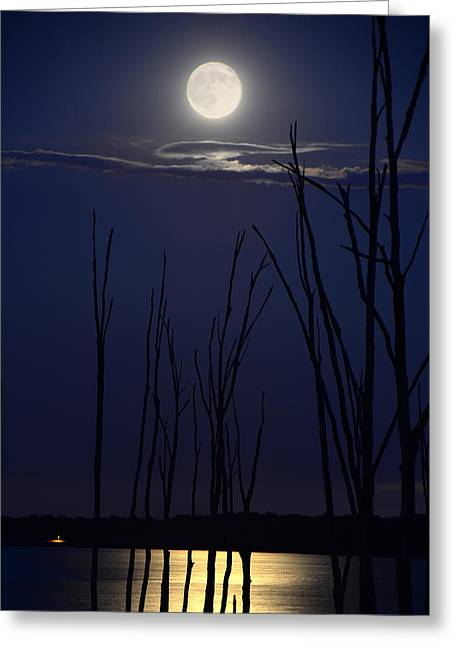 July 2014 Super Moon Greeting Card