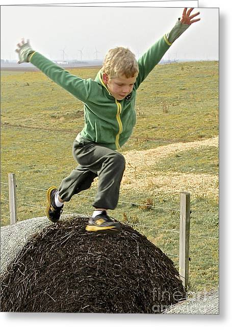 Jumping Haystacks Greeting Card