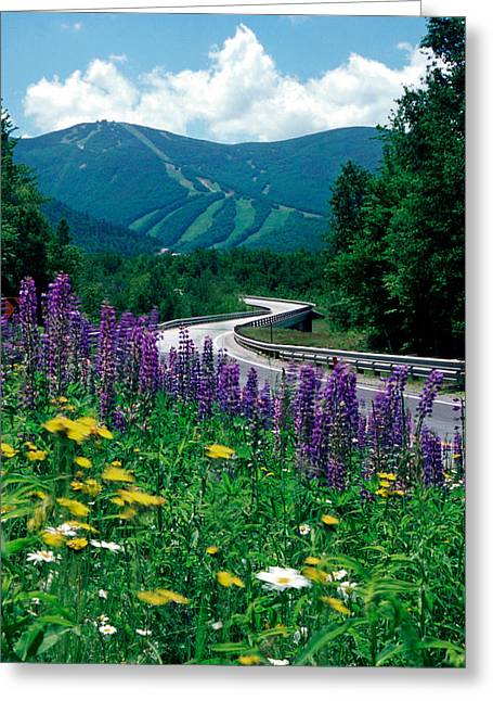 June In Franconia Notch Greeting Card