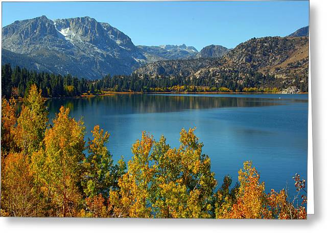 June Lake Blues And Golds Greeting Card by Lynn Bauer