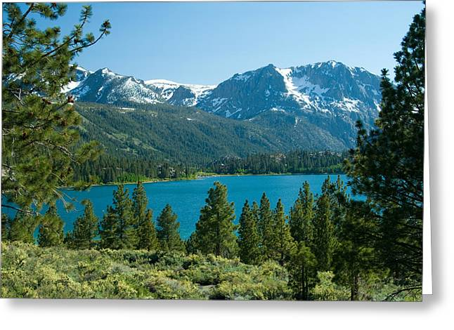 June Lake Loop Greeting Card by Celso Diniz