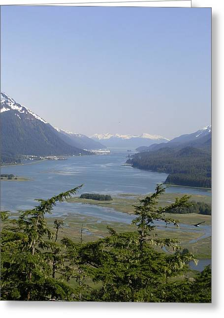 Juneau's Scenic Port Greeting Card by Cindy Croal