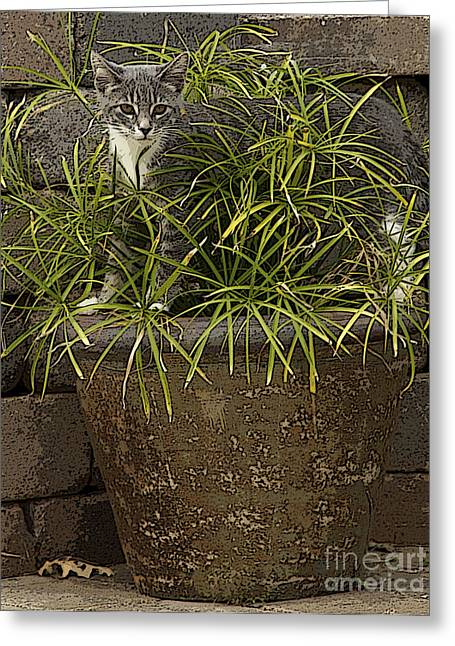 Jungle Kitty All Profits Go To Hospice Of The Calumet Area Greeting Card