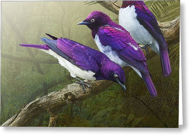 Jungle Mist -amethyst Starlings   Greeting Card by R christopher Vest