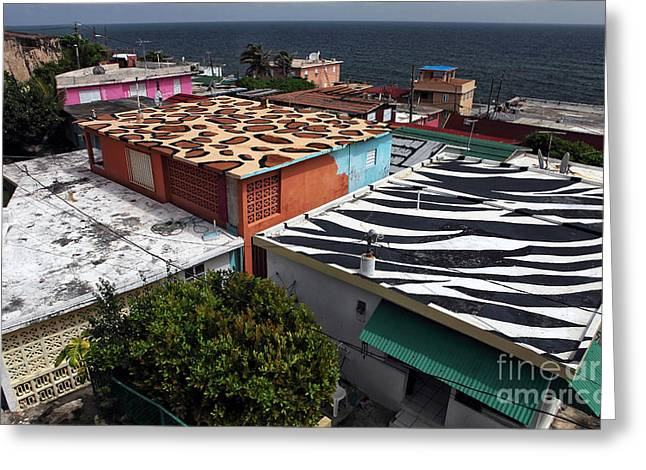 Jungle Roofs Greeting Card