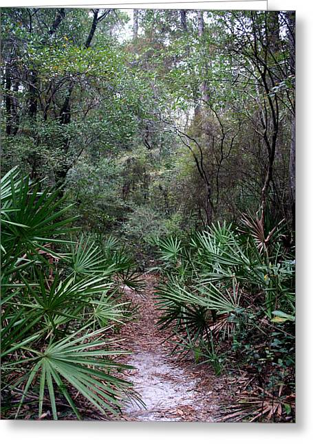 Jungle Trek Greeting Card