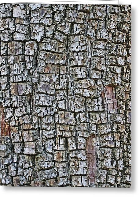 Greeting Card featuring the photograph Juniper Bark- Texture Collection by Tom Janca
