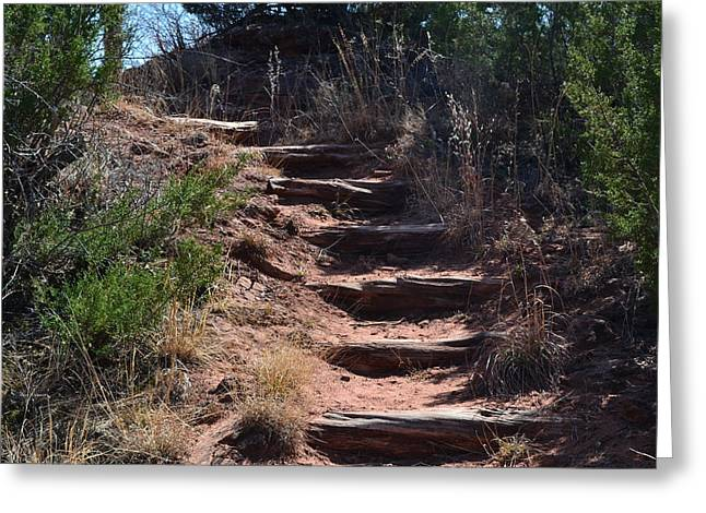 Juniper Ridge Steps Greeting Card