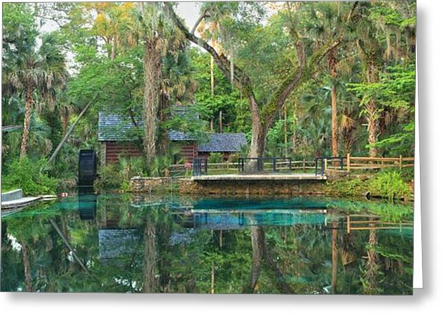 Juniper Springs Panorama Greeting Card by Adam Jewell