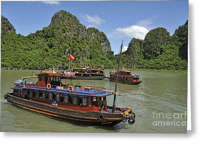 Junk Boats In Halong Bay Greeting Card by Sami Sarkis
