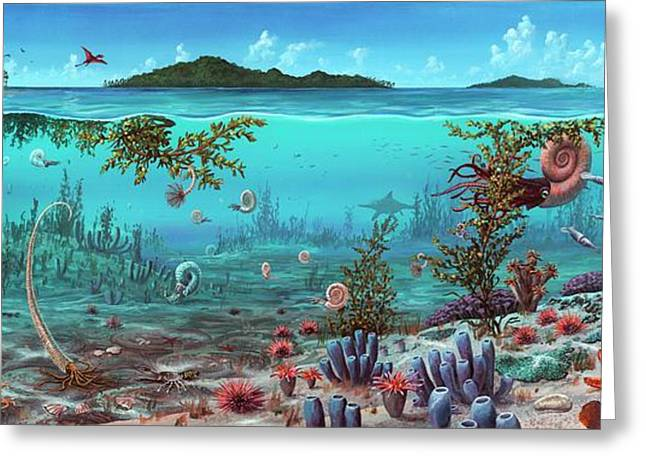 Jurassic Heteromorph Ammonites Greeting Card
