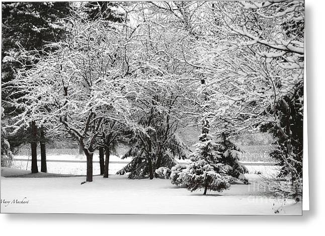 Just After A Snowfall Greeting Card