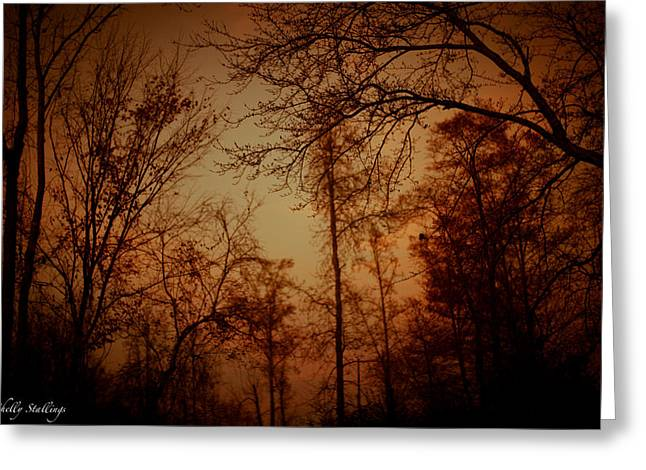 Greeting Card featuring the photograph Just After Sunset by Shelly Stallings