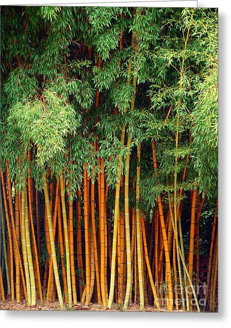 Just Bamboo Greeting Card by Sue Melvin