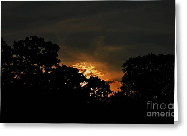Just Before Dark Greeting Card by Michelle Meenawong