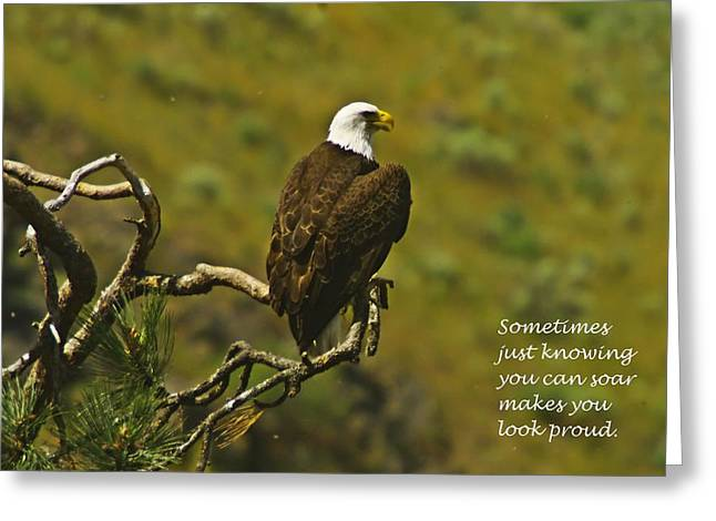 Just Knowing Greeting Card by Jeff Swan