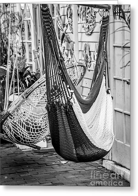Just Lazin - Hammocks Key West - Black And White Greeting Card by Ian Monk
