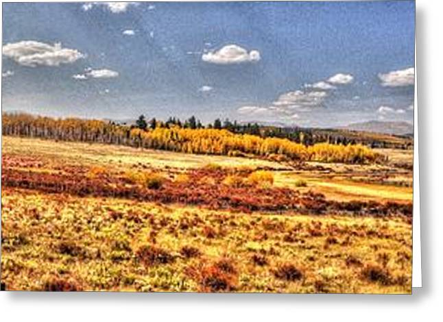 Greeting Card featuring the photograph Just North Of Fairplay Colorado by Lanita Williams