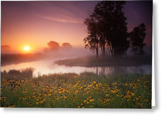 Just The Right Moment Greeting Card by Ray Mathis