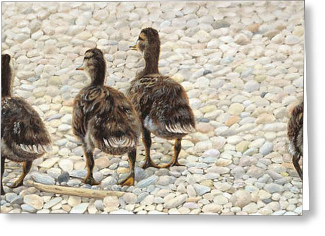 Just Waddling Greeting Card by Tammy  Taylor
