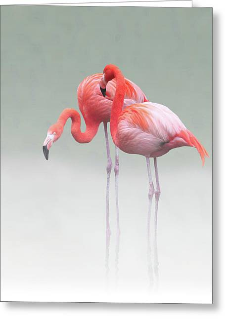 Just We Two ... Greeting Card