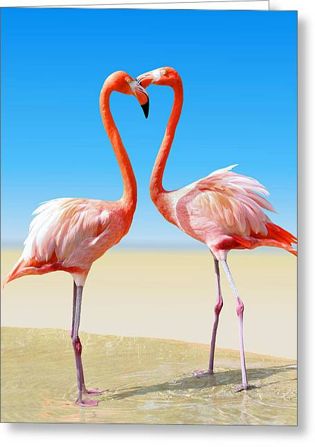Just We Two Greeting Card by Kristin Elmquist