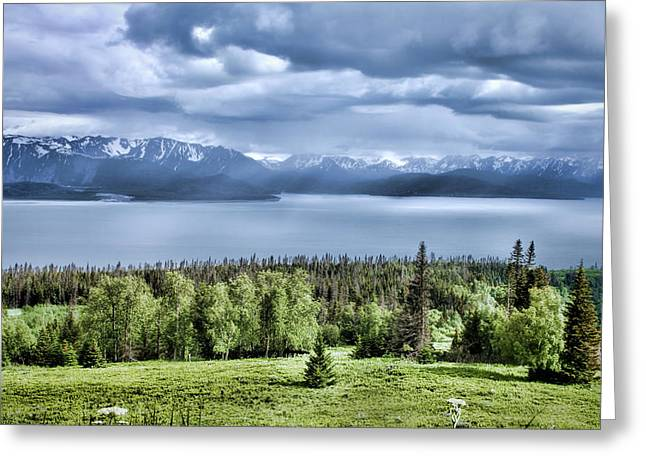 Kachemak Bay Greeting Card