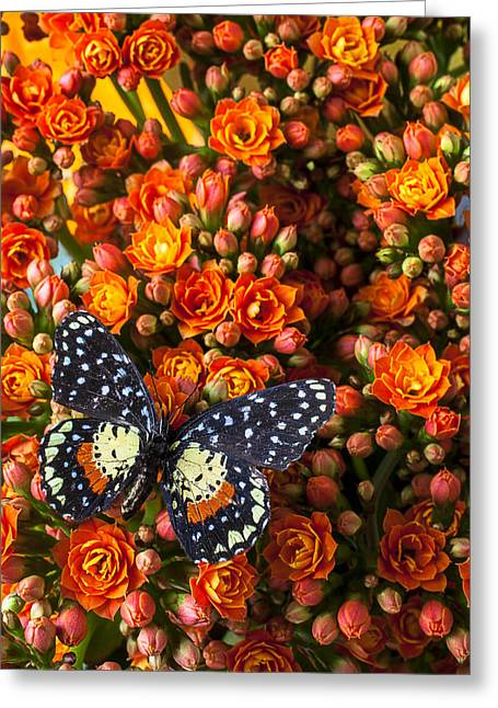 Kalanchoe Plant With Speckled Butterfly Greeting Card