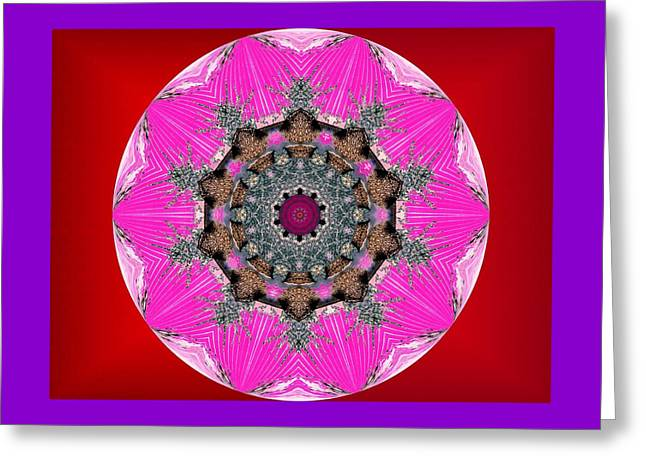 Kaleidoscope Greeting Card by Mike Breau