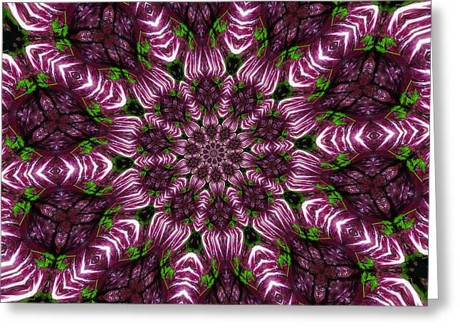 Kaleidoscope Raddichio Lettuce Greeting Card by Amy Cicconi