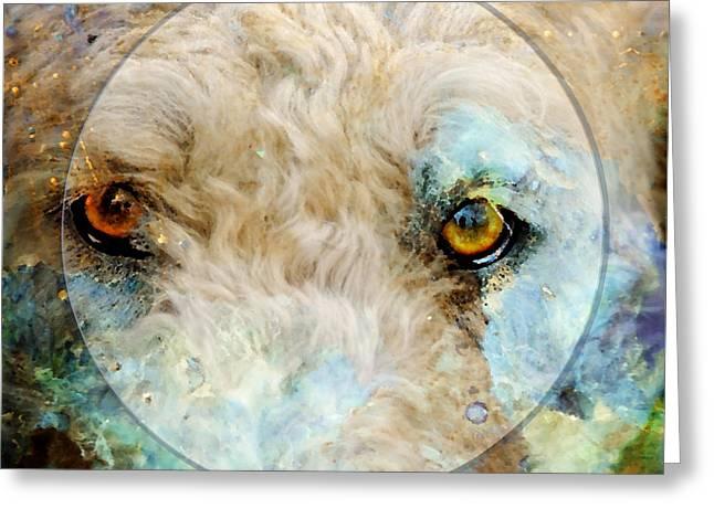 Kaliedoscope Eyes Greeting Card by Judy Wood