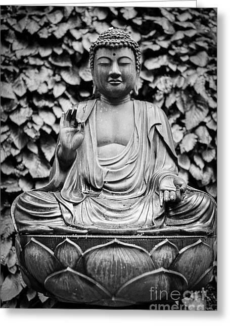 Kamakura Buddha Ix Greeting Card
