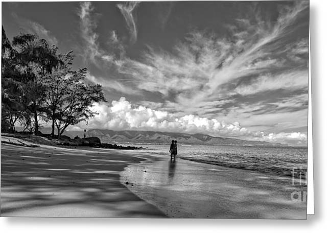 Kanahna Beach Maui Hawaii Panoramic Greeting Card