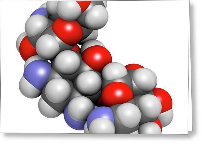 Kanamycin Antibiotic Drug Molecule Greeting Card