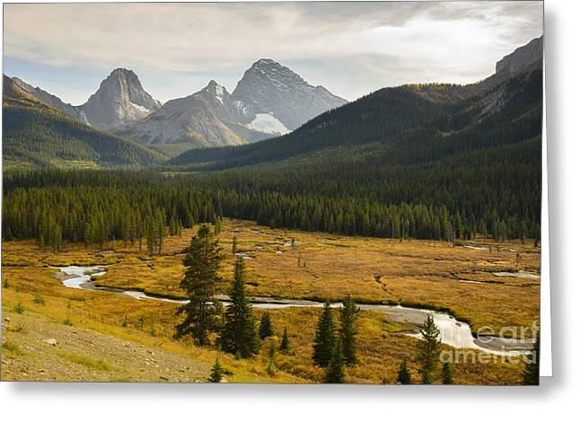 Kananaskis Country Greeting Card by Ginevre Smith