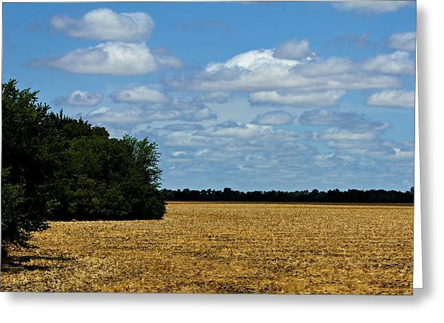 Kansas Fields Greeting Card